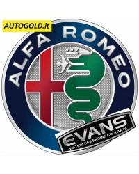 EVANS - kit Alfa Romeo